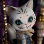 Лимитный кот Cheshire Pang лот Piposland