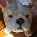 Молд для собачки реборн. Bulldog от Jade Warner