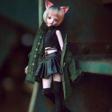У Dollzone новинка - две девочки формата 1/4 на теле b45-017