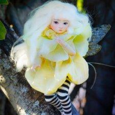 Dream High Studio - FINCH the fairy