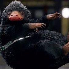 Nifflers грызуно-подобное существо с выкройкой