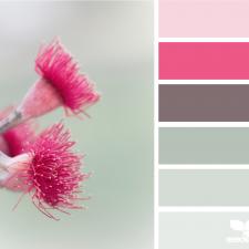 Варианты сочетания цветов
