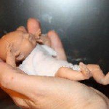 Страдания по авторской кукле Миракл