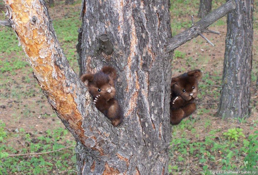 Лежак своими руками из дерева фото это непростое