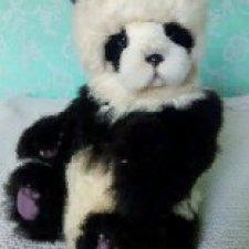 Мои панды