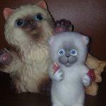 И снова котятки! Валяние игрушек из шерсти