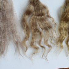 Как покрасить козочку в блонд?