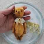 Солнечный медвежонок ищет дом!