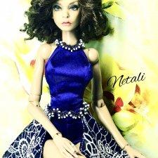 Комплект для кукол Ольги Литвинович