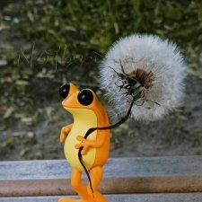Здравствуй, новая лягушка! Apofrog.