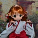 Mamachapp Moko chan Miko Kitsune Dark Red