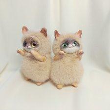 Парочка пухлых котиков