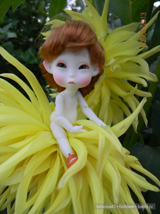 Monthly Fairy - Woody