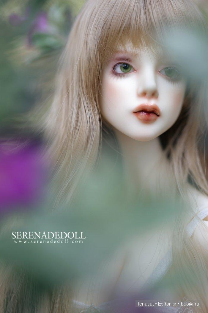 SerenadeDoll