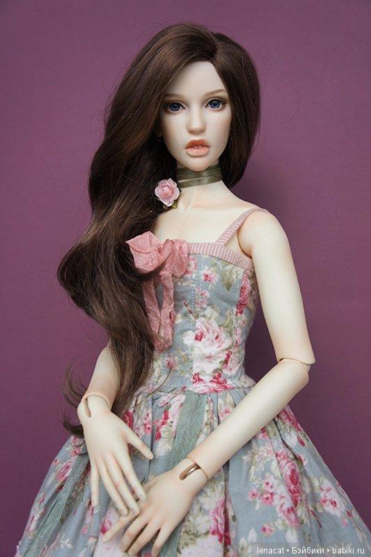 Amanda Dollshe