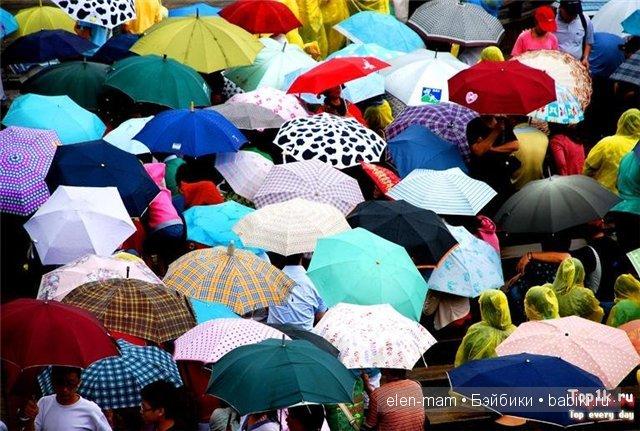 зонтики-зонтики