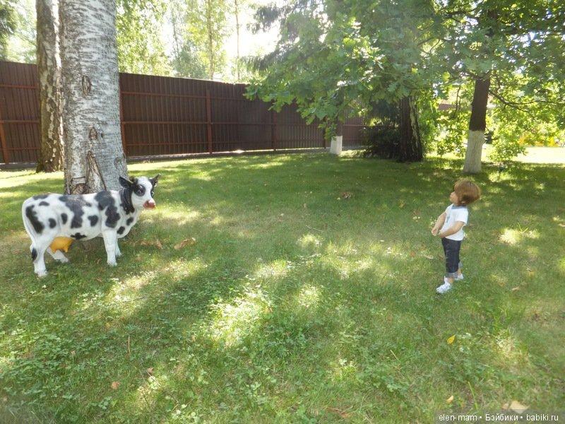 Майк идёт к корове