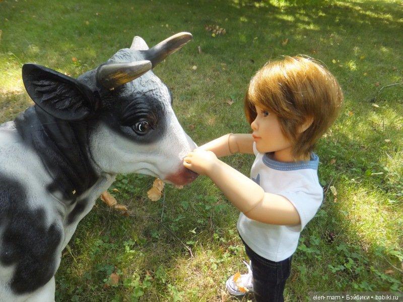 Погладил корову, 2