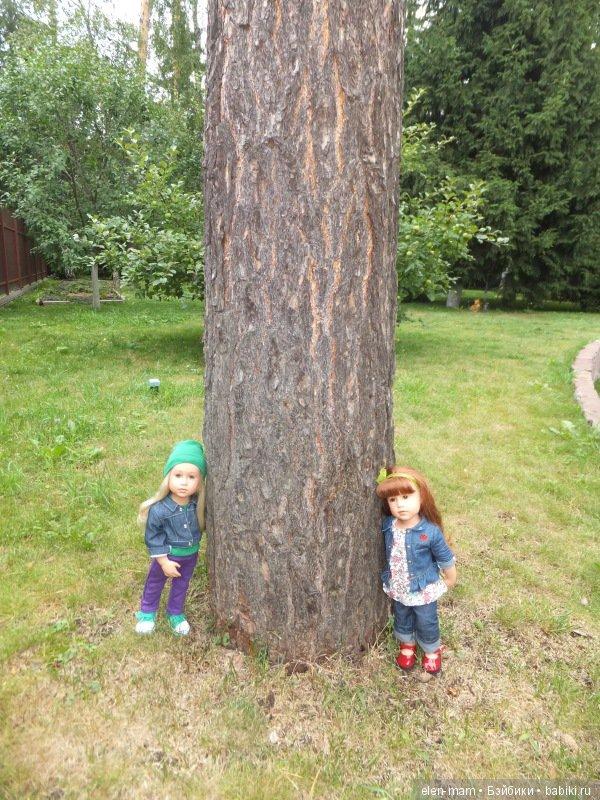У большого дерева 3