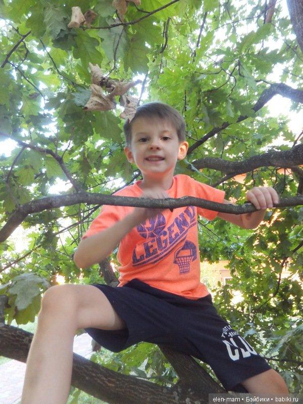 Данька на дереве 2