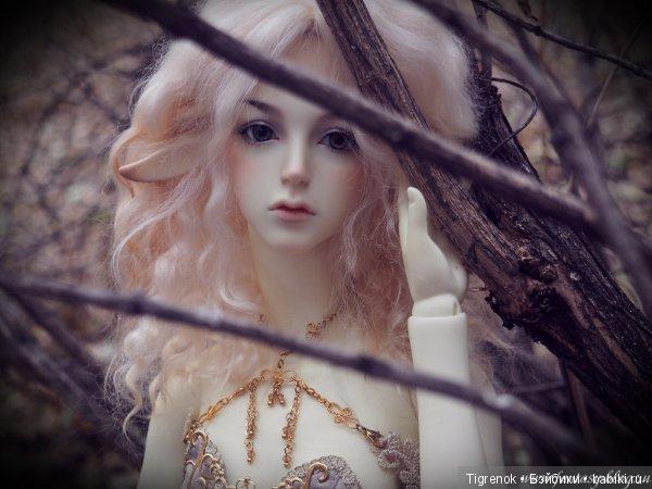 SOOM Amber - Pure Spirit (Елена)