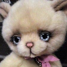 Авторский котенок Самсон