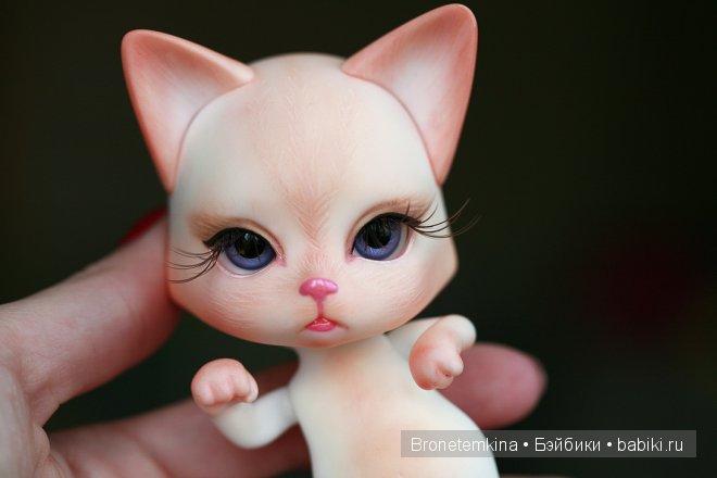 luts cat