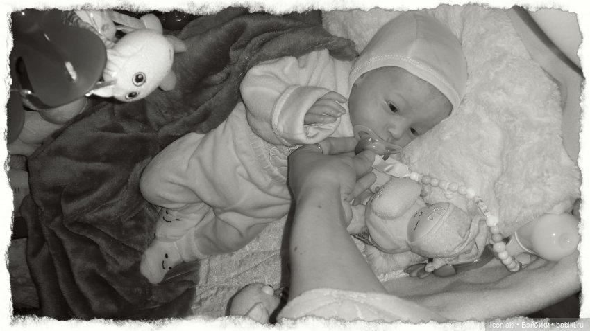 Reborn Will Natalie Scholl