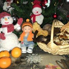 Рождественская грибалка Даньки