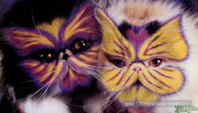 покраска кошки