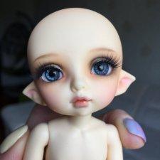 Продам очаровательную малышку пукифи Zoe