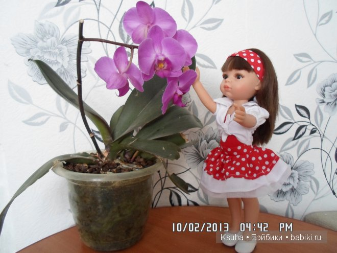 красавица от Paola Reina - Керол