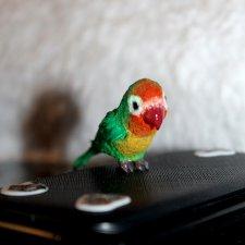 Миниатюрный попугайчик