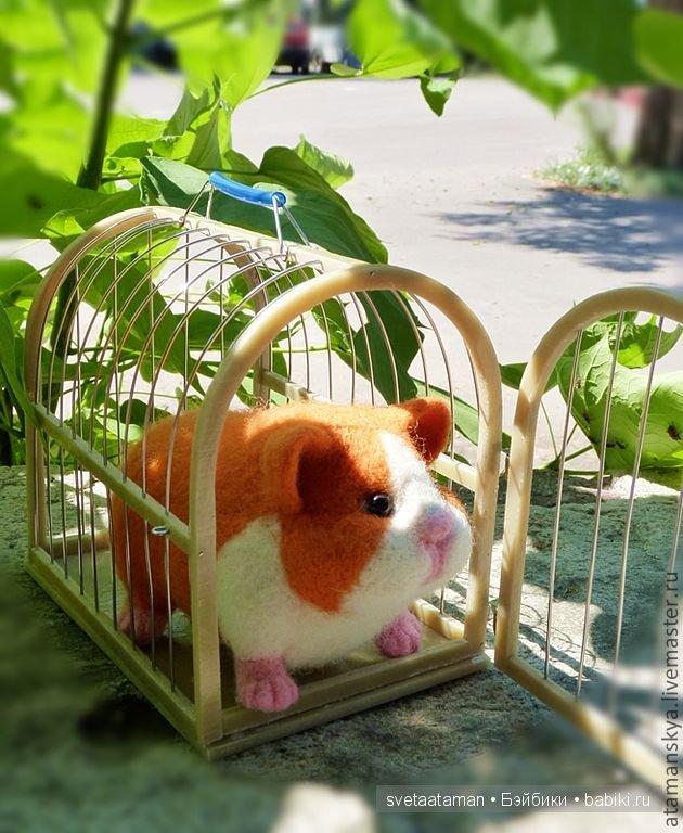 Игрушки для морских свинок купить