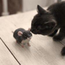 Мышек много не бывает. Валяние игрушек из шерсти