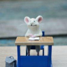 А мышки уже приготовились к школе