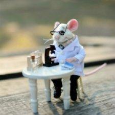 Мышки-медики