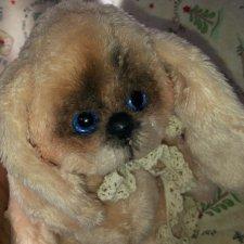 Маленький щеночек Ханни