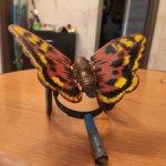 Бабочка каталка жесть