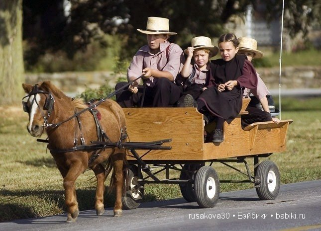 the armish past and present What children enjoy at amish acres there is a connection between the past and present that between the adult films genesis and exodus of the amish.