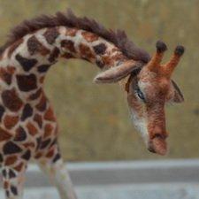 Жираф. Игрушка в технике сухое валяние