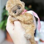 Мастер класс по созданию обезьянки-тедди, игрушки ручной работы в Москве