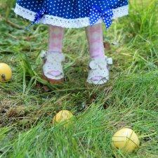 Было лето, и яблоки зрели в садах