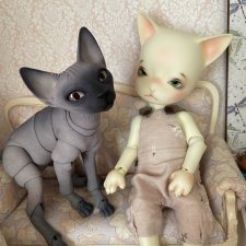 Два Кота одним лотом