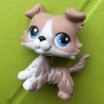 Littlest Pet Shop Колли