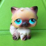 Littlest Pet Shop Кот