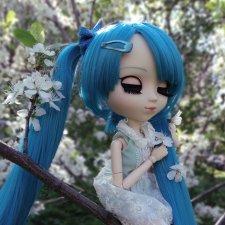 Майские воспоминания... Прекрасная Pullip Hatsune Miku и не менее прекрасные вишневые цветы
