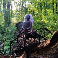Маленький паучок в большом лесу