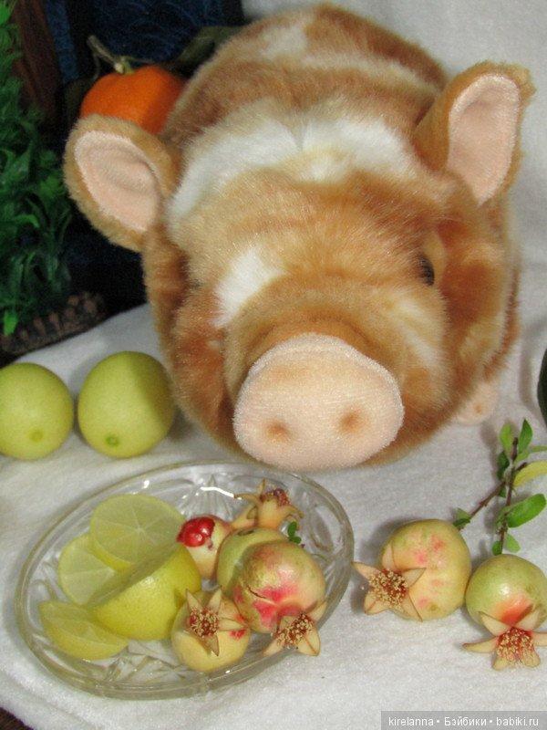 фантазия картинка свинья в апельсинах вокруг для меня
