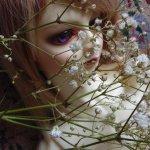 В белом цвете...
